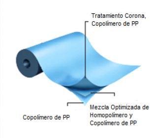 TRANSPARENTE PARA CONVERSION